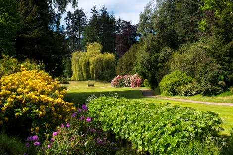 Gardens of Hillsborough Castle with shrubs and stream in the foreground in bright sunshine