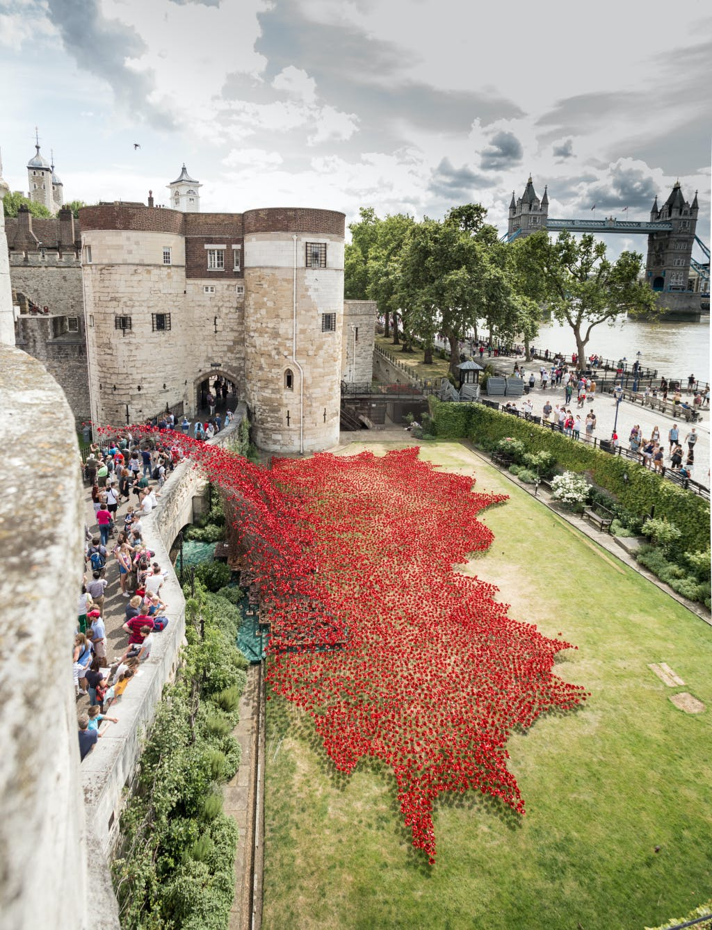 "A view of the over 800,000 ceramic poppies, including ""the Wave"" that appeared around the Tower of London over the summer of 2014 to form a major art installation marking the centenary of the First World War"