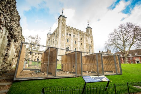 A picture of the ravens cages with White Tower and South lawn in background with clear blue skies.