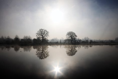 Home Park in winter, showing mist over the Rick Pond and dark, bare trees reflected in the water.
