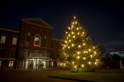 Christmas tree in front of Kensington Palace
