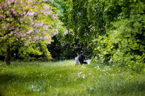 Visitors pushing a pram through the Wilderness of Hampton Court Palace. A tree with pink blossom stands in the foreground
