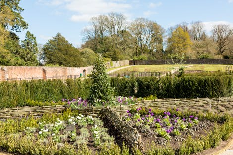A walled garden under a blue cloudy sky, showing border hedges and plants growing along pathways