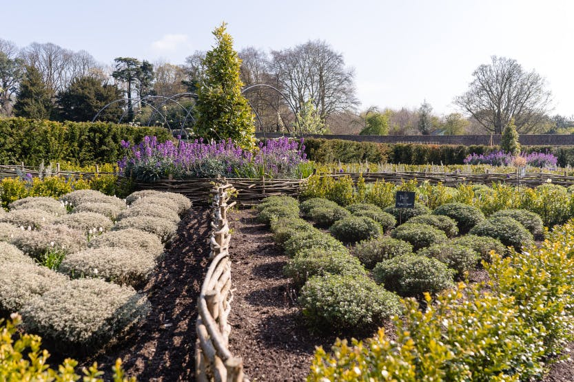 Hillsborough Castle Gardens