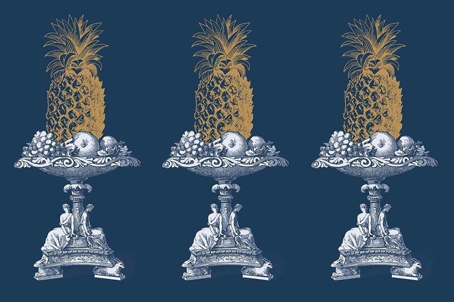 An ornate print of pineapples against a dark blue background.