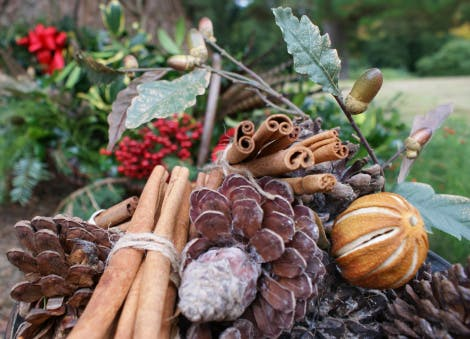 Close-up of cinnamon sticks, cones, dried oranges along with gathered red berries, feathers, red ribbon and Christmas foliage in a basket; collected from the Hillsborough Castle gardens.