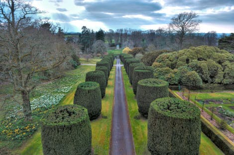 A view from above looking straight down Yew Tree Walk with Lady Alice's Temple at the far end. Clouds in the sky and bare trees suggest it was taken in late Autumn/early winter.