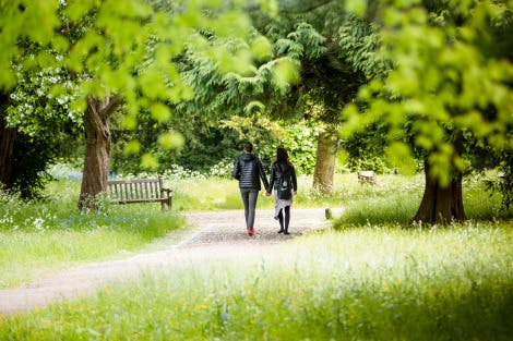 A young couple wander through a wild meadow holding hands. Green trees and grasses flank the path