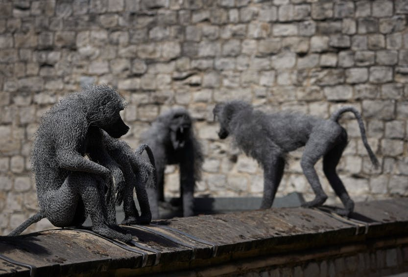 Sculpture of a baboon troop for the Royal Beasts exhibition