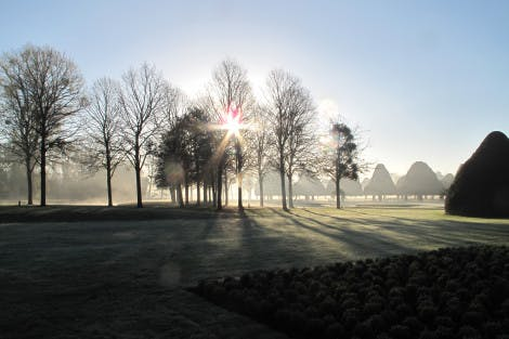 The Great Fountain Garden early morning mist. Showing a low sun through the trees and long shadows of the trees across the lawn.