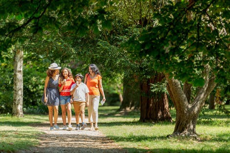 A family of two women, a boy and a girl walk through the Wilderness at Hampton Court Palace on a sunny day. The children hold ice creams.