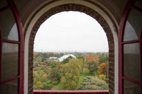 A view looking north through the brick archway of a window from the Great Pagoda. Showing the Pagoda Vista. The roof of the Temperate House is just seen.