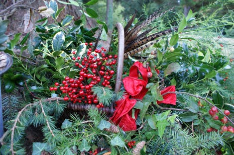 Close-up of gathered red berries, feathers, red ribbon and Christmas foliage in a basket; collected from the Hillsborough Castle gardens.