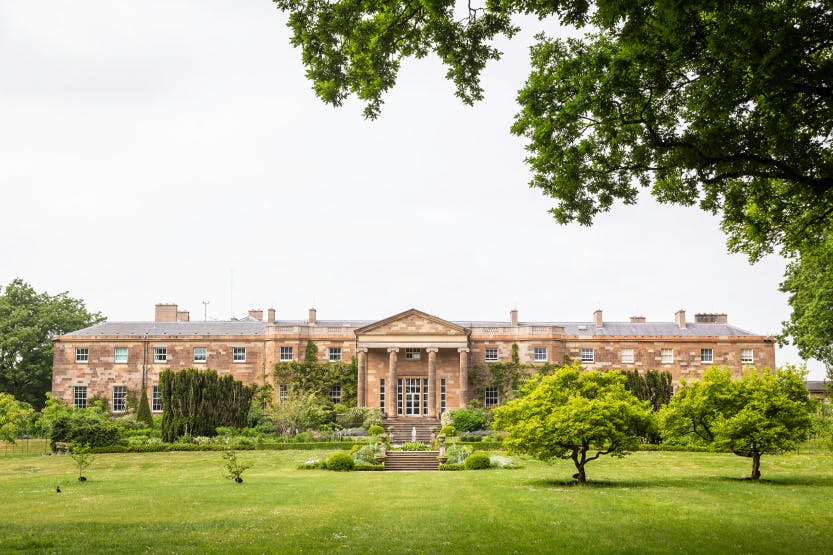 The South Terrace, looking north from the lawn. Tree foliage in the foreground overhangs the top left of this image.