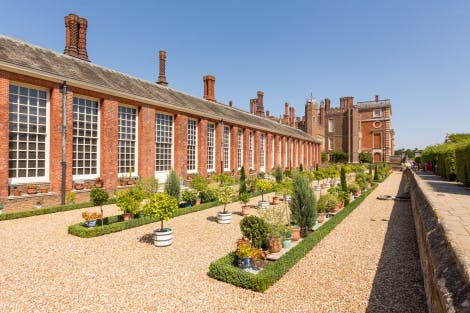 The baroque Orangery and exotic plants at Hampton Court Palace