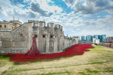 A view of the over 800,000 ceramic poppies that appeared around the Tower of London over the summer of 2014 to form a major art installation marking the centenary of the First World War. The red ceramic poppies spill down the Tower of London and pool out into the Tower Moat.