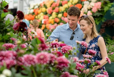 Visitors enjoy the displays at the RHS Hampton Court Palace Flower Show