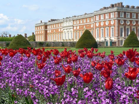 The South Front, looking across summer bedding of red tulips and purple phlox in the Great Fountain Garden. This photograph was taken by Historic Royal Palaces volunteer Debbie Farmer, winner of the 2017 Historic Royal Palaces Volunteers Photography Competition, 'Flora and Fauna at the palaces'. It was published in the July 2017 edition of Volunteer Voice.
