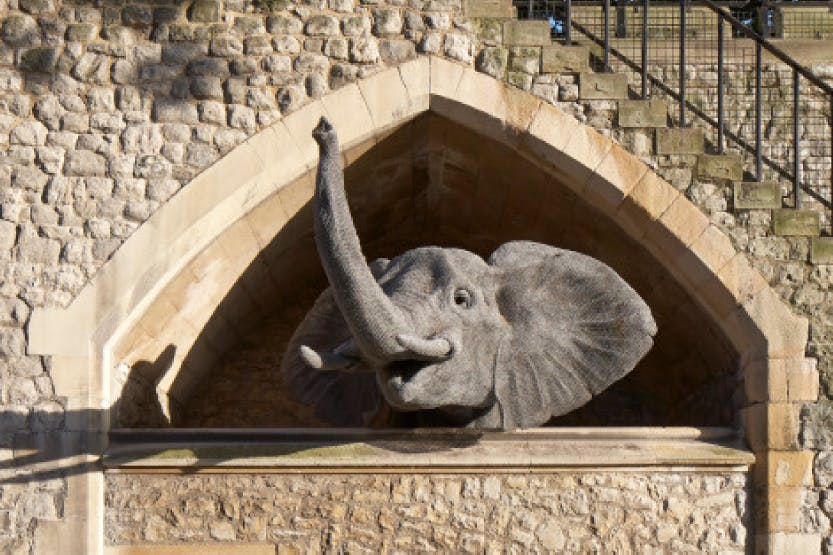 Sculpture of an elephant made from galvanised wire.