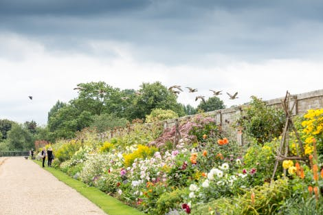 The Long Border, looking south-west, showing summer bedding. Ducks are seen flying west over the garden wall.