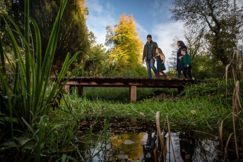 A family walk through the Lost Garden at Hillsborough Castle and Gardens. There are orange and yellow trees on the leaves in the background, surrounded by green and yellow autumn foliage.
