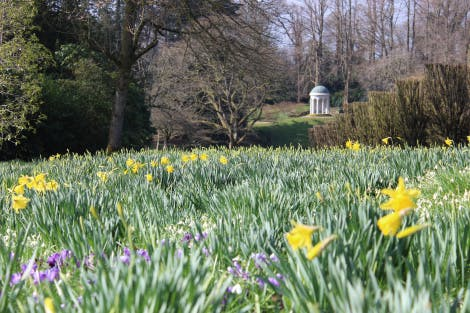A view of Lady Alice's Temple, a domed garden folly, viewed from the gardens at Hillsborough Castle. The gardens surrounding the folly are filled with yellow daffodils