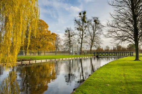 The Great Fountain Garden in autumn. The canal, looking south east towards Kingston Gate.