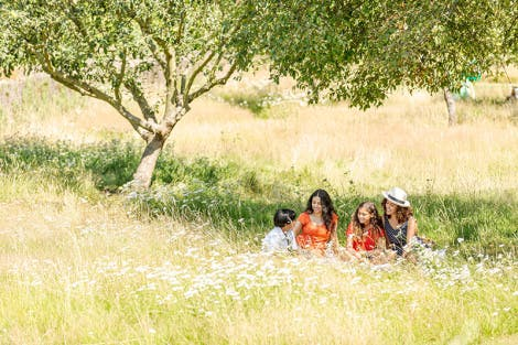 Family of two women, a boy and a girl relax on a picnic blanket in the Orchard at Hampton Court Palace on a sunny day