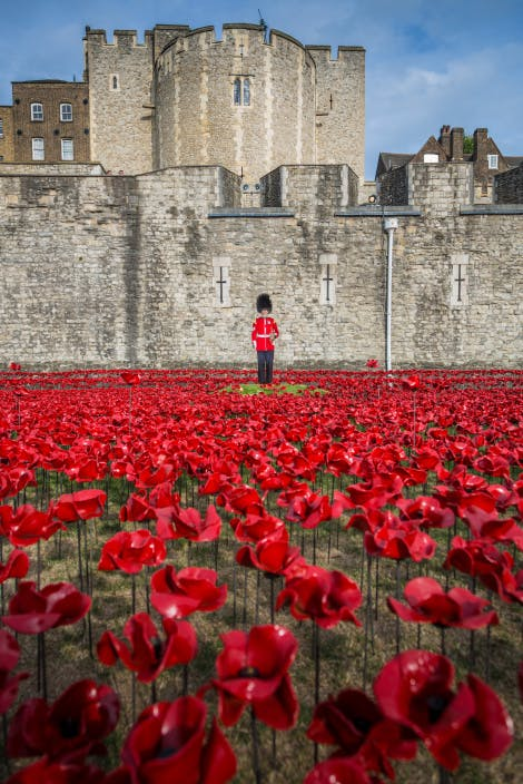 Tower Of London Remembers Tower Of London Historic Royal Palaces