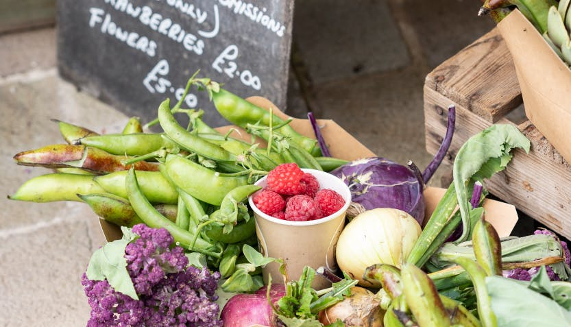 Selection of summer fruit and vegetables produced from Walled Garden