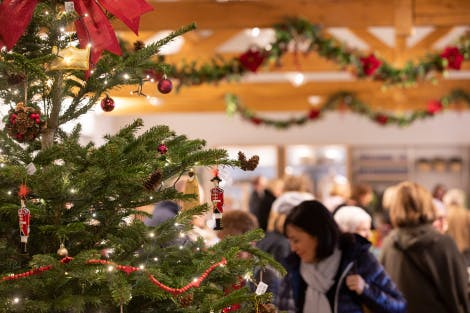 Christmas tree and decorations in shop