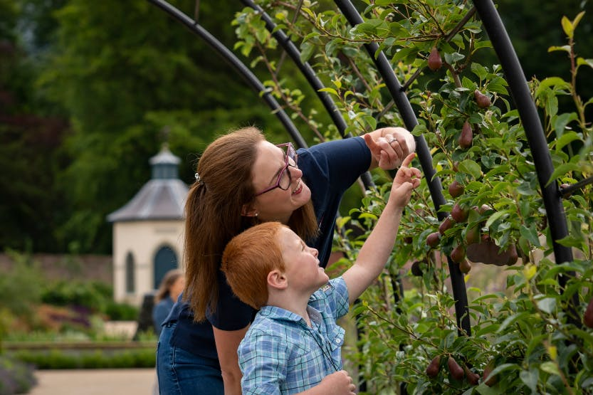 Adult and child looking and pointing at plants against a decorative panel in the Walled Garden.