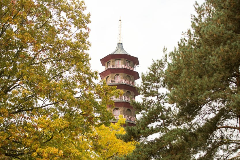The Great Pagoda, showing the top four storeys. Trees with autumn leaves are in the foreground. The Great Pagoda is an imitation Chinese octagonal tower of ten storeys designed by Sir William Chambers and completed in 1762.