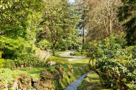 The Glen at Hillsborough Castle and Gardens, showing a stream running through a woody green area under a blue sky